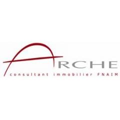ARCHE CONSULTANT